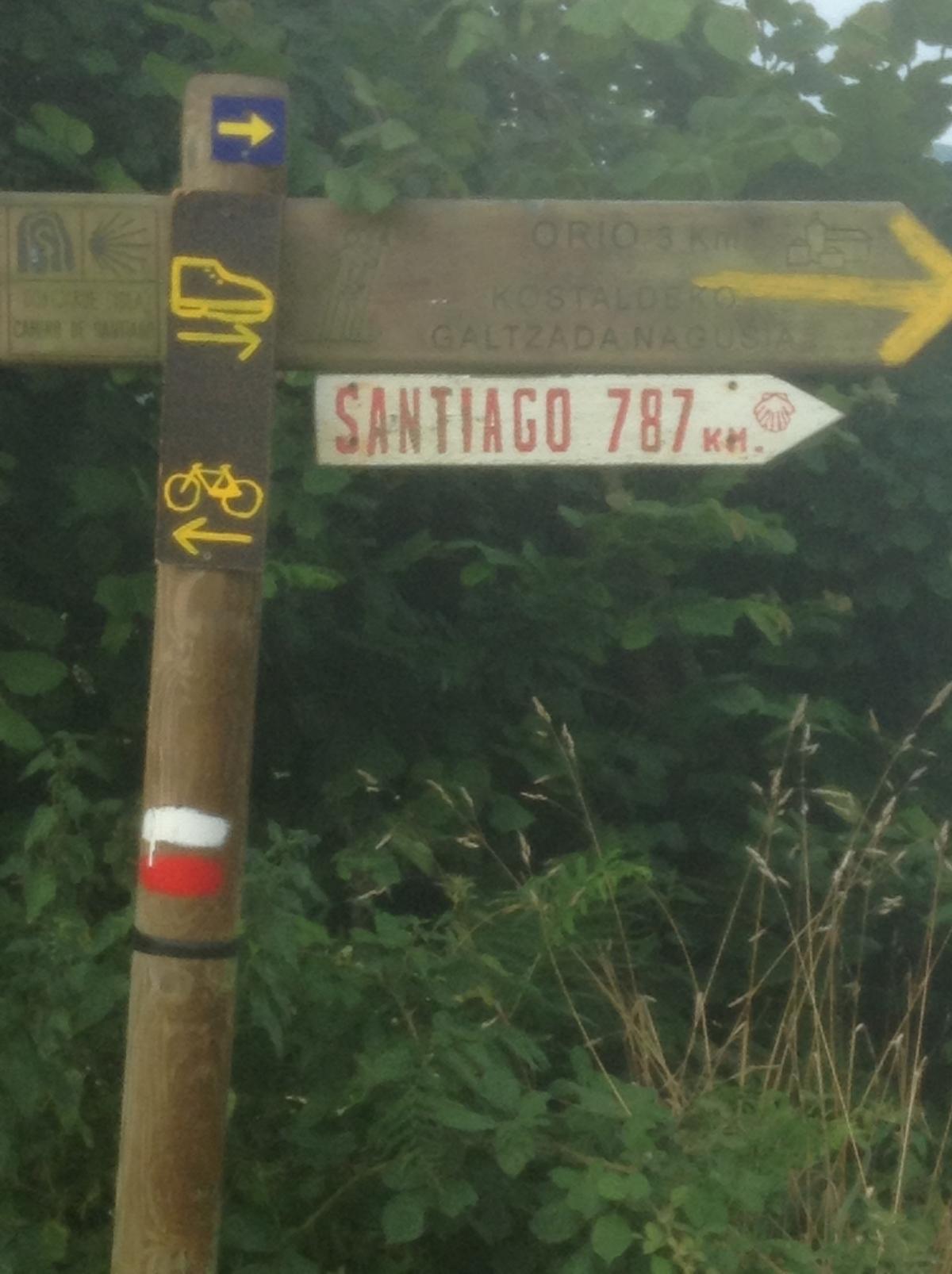 Camino De SantiagoII